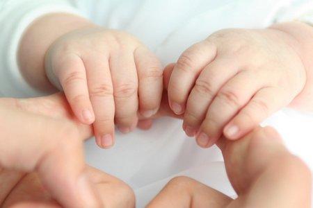 Geburt Behördenwege