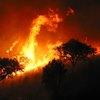 Waldbrand-Verordnung 2017
