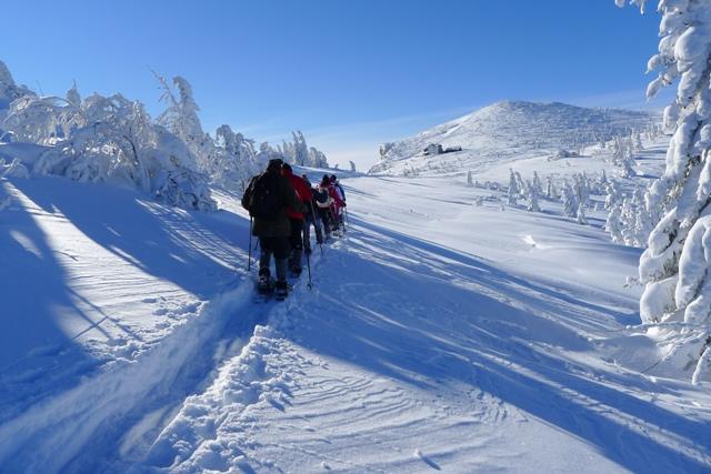 Foto zur Veranstaltung Geführte Schneeschuhwanderungen
